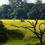 Eshowe Hills