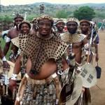 Zulu Men At A Traditional Zulu Wedding