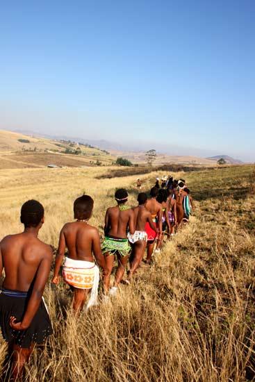 Best cheap essays zulu